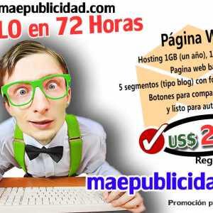 Promo Sitio Web por solo 249